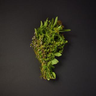 """Kräutermix """"Provence"""""""