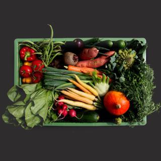 Gemüse Biokiste riesig