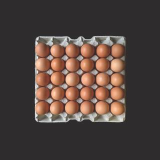 Bio-Eier 30er (demeter)